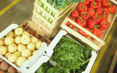 Nyt nationalt madprojekt: Vi skal spise os ud af ensomheden sammen